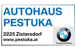 Autohaus Pestuka